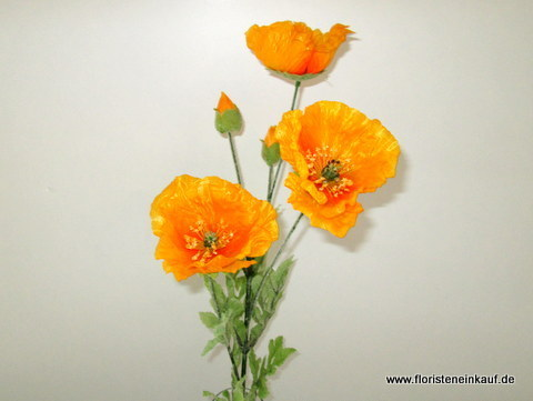 Mohn 5x, 75cm, gelb-orange